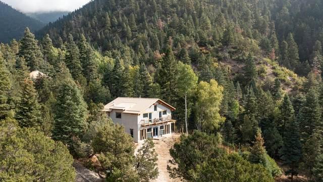 119 Canada Del Agua, Arroyo Seco, NM 87514 (MLS #107842) :: Angel Fire Real Estate & Land Co.