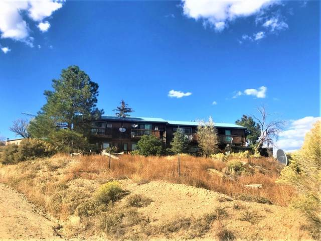 324 State Road 240, Taos, NM 87571 (MLS #107857) :: Page Sullivan Group
