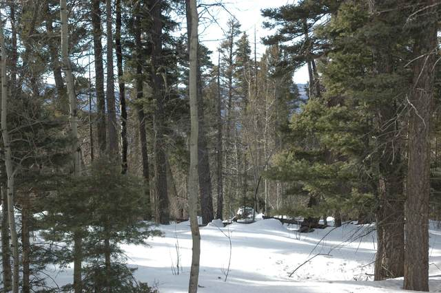 1415 Royale Ave, Angel Fire, NM 87710 (MLS #107859) :: Angel Fire Real Estate & Land Co.