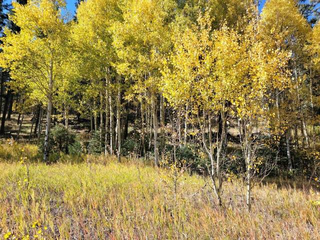 Lot 154 Valle Escondido, Taos, NM 87571 (MLS #107875) :: Berkshire Hathaway Home Services