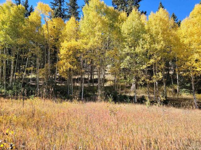 Lot 155 Valle Escondido, Taos, NM 87571 (MLS #107876) :: Berkshire Hathaway Home Services