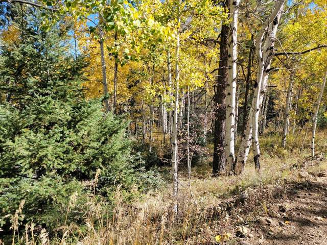Lot 174 Valle Escondido, Taos, NM 87571 (MLS #107883) :: Berkshire Hathaway Home Services