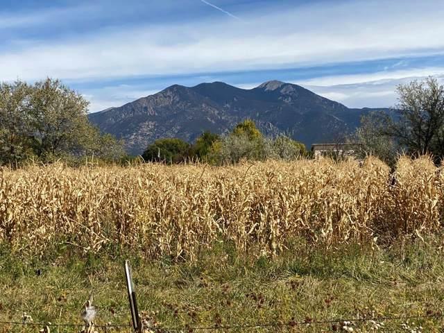 0 Adrienne, Taos, NM 87571 (MLS #107898) :: Page Sullivan Group