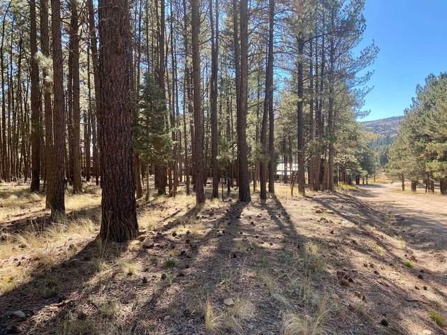 Lot 6 Broadmoor Way, Angel Fire, NM 87710 (MLS #107912) :: Angel Fire Real Estate & Land Co.