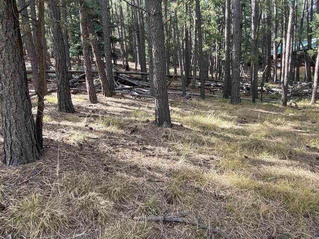 lot 6 Sarazen Terrace, Angel Fire, NM 87710 (MLS #107913) :: Angel Fire Real Estate & Land Co.