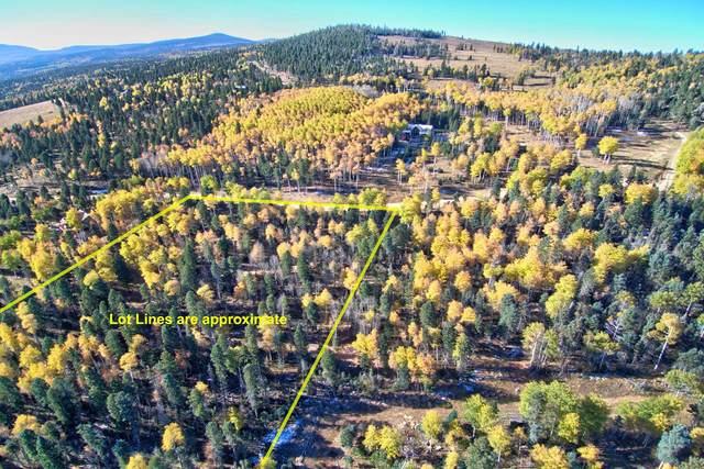 81 Zia Rd, Angel Fire, NM 87710 (MLS #107926) :: Angel Fire Real Estate & Land Co.