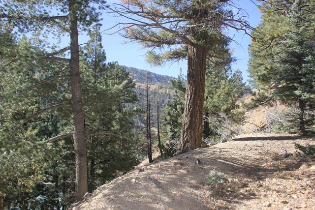 lot 11 Mountain Meadows Addition, Red River, NM 57558 (MLS #107943) :: Chisum Realty Group