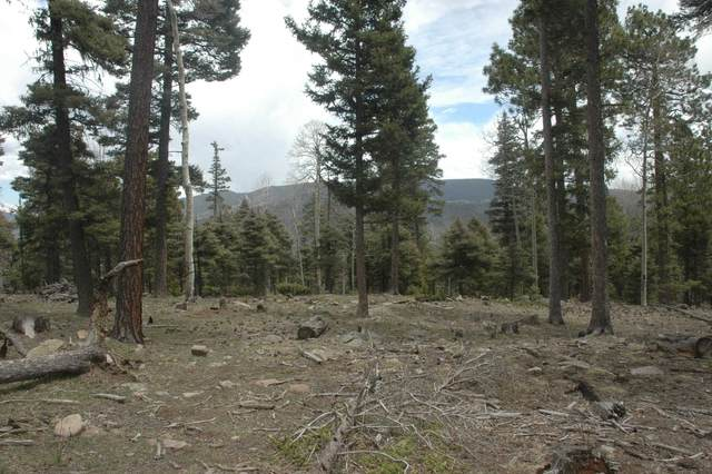 lot 98 Zia Road, Angel Fire, NM 87710 (MLS #107953) :: Berkshire Hathaway Home Services