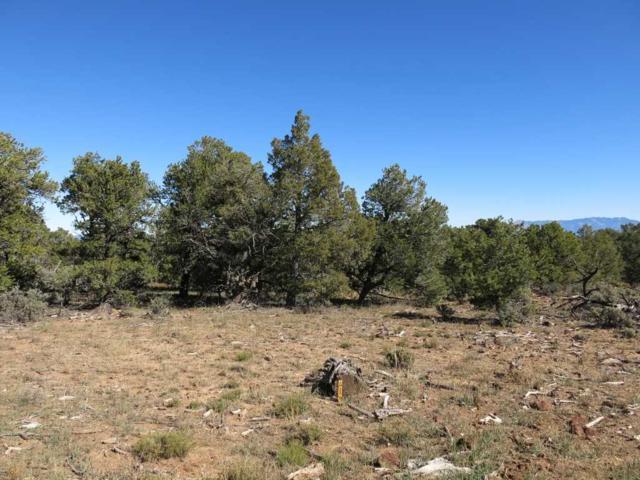 41 Servilleta Lot 41, Tres Piedras, NM 87577 (MLS #94410) :: Page Sullivan Group