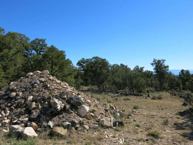 57 Servilleta Lot 57, Tres Piedras, NM 87577 (MLS #94412) :: Angel Fire Real Estate & Land Co.