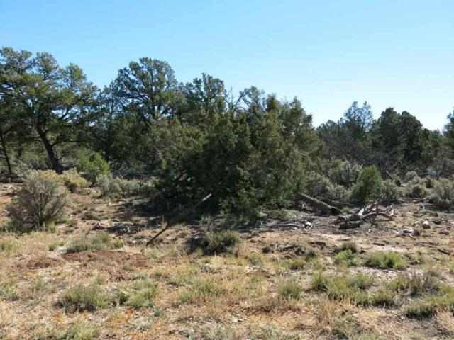 58 Servilleta Lot 58, Tres Piedras, NM 87577 (MLS #94416) :: Page Sullivan Group | Coldwell Banker Lota Realty