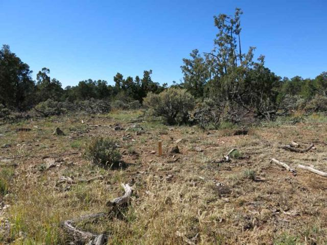 43 Servilleta Lot 43, Tres Piedras, NM 87577 (MLS #94418) :: Page Sullivan Group | Coldwell Banker Mountain Properties