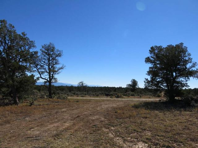 51 Servilleta Lot 51, Tres Piedras, NM 87577 (MLS #94419) :: The Chisum Realty Group