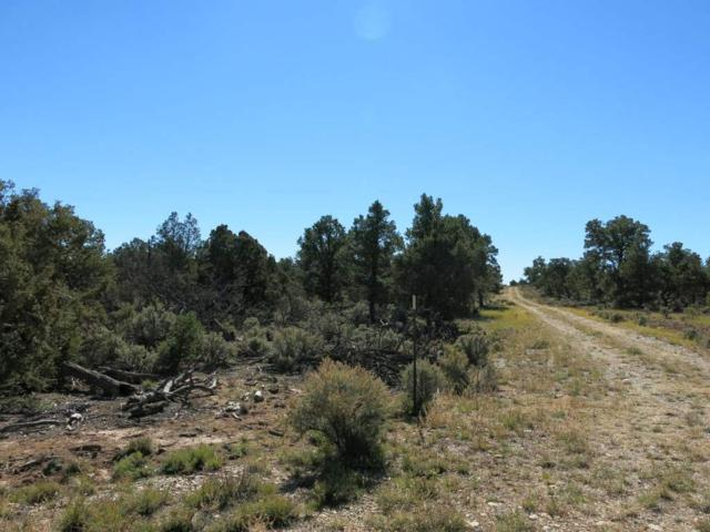 59 Servilleta Lot 59, Tres Piedras, NM 87577 (MLS #94420) :: The Chisum Realty Group
