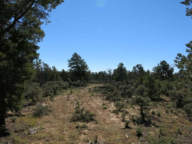 38 Servilleta Lot 38, Tres Piedras, NM 87577 (MLS #94421) :: Angel Fire Real Estate & Land Co.