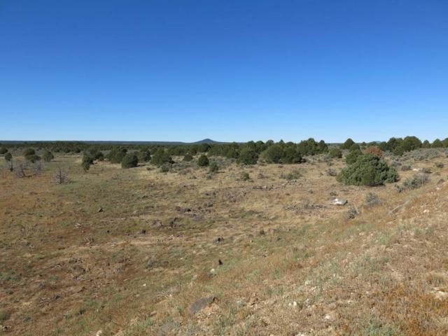 13 Servilleta Lot 13 Phase I, Tres Piedras, NM 87577 (MLS #94425) :: Page Sullivan Group | Coldwell Banker Mountain Properties
