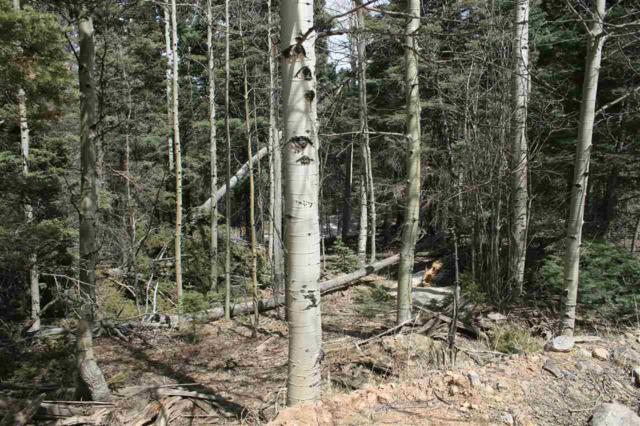 Lot 7 Chalet 4, Angel Fire, NM 87710 (MLS #95003) :: The Chisum Realty Group