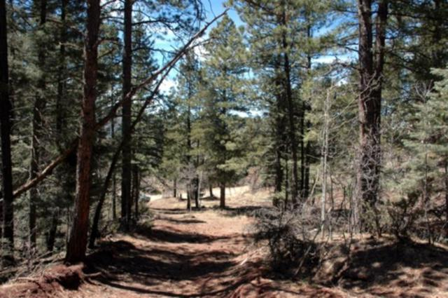 Lot 95 Back Basin Rd., Angel Fire, NM 87710 (MLS #95199) :: Page Sullivan Group | Coldwell Banker Lota Realty