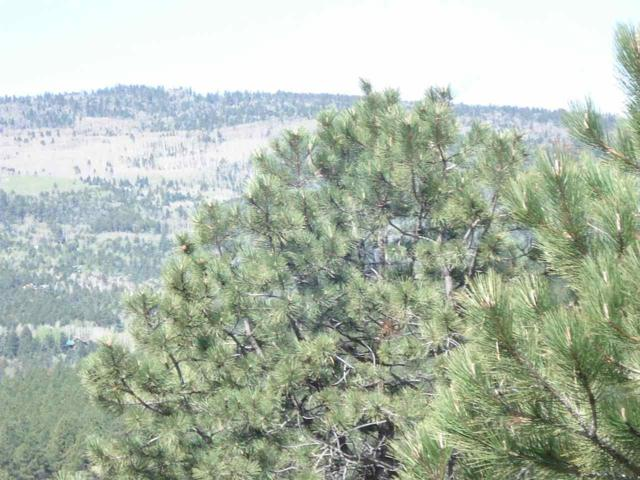 Lot 2A South Angel Fire Road, Angel Fire, NM 87710 (MLS #95279) :: Chisum Realty Group