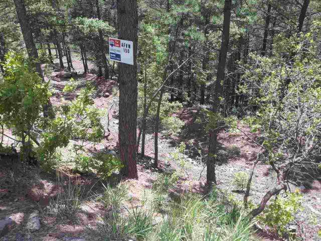 156 Back Basin Road, Angel Fire, NM 87710 (MLS #95428) :: Page Sullivan Group | Coldwell Banker Lota Realty