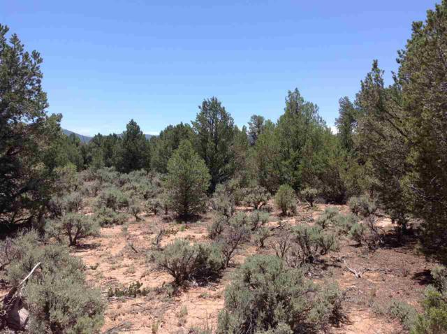 Petaca Rd, Carson, NM 87517 (MLS #95457) :: Chisum Realty Group