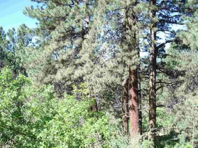 Lot 91 Back Basin Road, Angel Fire, NM 87710 (MLS #95467) :: Page Sullivan Group | Coldwell Banker Lota Realty