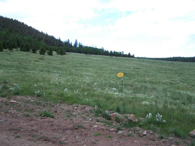 Lot 67 Dancing Bear, Angel Fire, NM 87710 (MLS #95699) :: Page Sullivan Group | Coldwell Banker Lota Realty