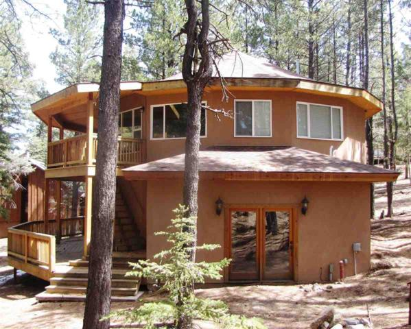 40 Saints Terrace, Angel Fire, NM 87710 (MLS #95705) :: Page Sullivan Group | Coldwell Banker Lota Realty