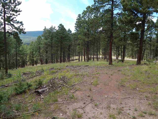 1548 Camino Real, Angel Fire, NM 87710 (MLS #95812) :: Page Sullivan Group | Coldwell Banker Lota Realty