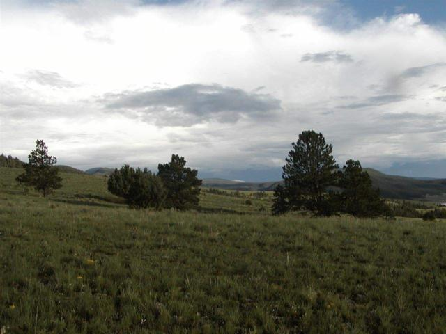 Lot 19A Bluestream Subdivision, Angel Fire, NM 87710 (MLS #95890) :: Chisum Realty Group
