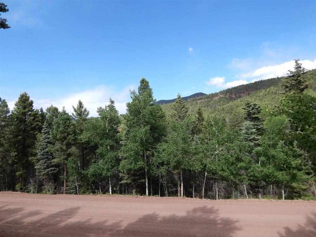 376 Amended Vail Avenue North, Angel Fire, NM 87710 (MLS #95949) :: Angel Fire Real Estate & Land Co.