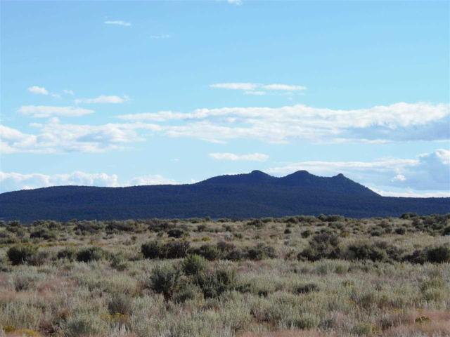 TR 11-A Bald Eagle Subdivision, Taos, NM 87571 (MLS #95952) :: Page Sullivan Group | Coldwell Banker Lota Realty