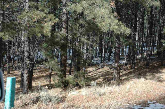 Lot 23 Valley Rd., Angel Fire, NM 87710 (MLS #96240) :: Page Sullivan Group | Coldwell Banker Lota Realty