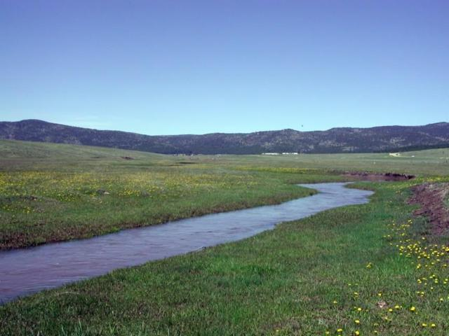 295.7 Acres Valley High Ranch, Angel Fire, NM 87710 (MLS #96325) :: Angel Fire Real Estate & Land Co.