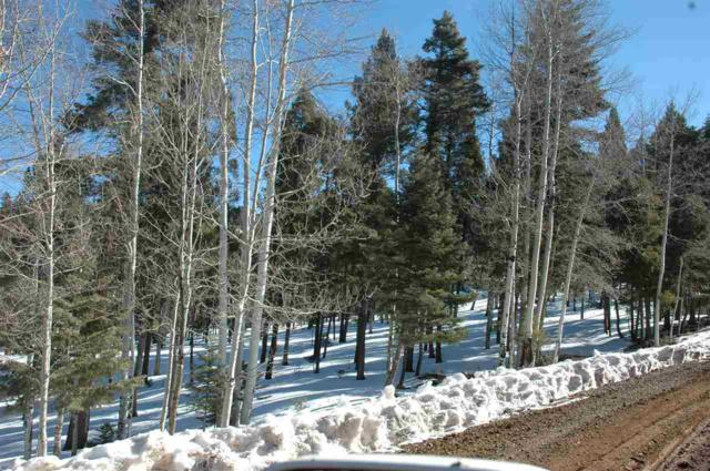 Lot 236 Vista Del Valle, Angel Fire, NM 87710 (MLS #96432) :: Page Sullivan Group | Coldwell Banker Lota Realty