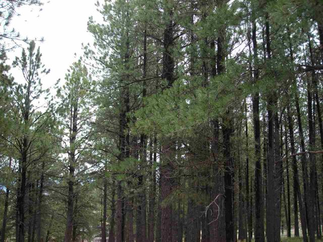 part of 198 NE Part Of 198 Cieneguilla, Angel Fire, NM 87710 (MLS #96811) :: Page Sullivan Group | Coldwell Banker Lota Realty
