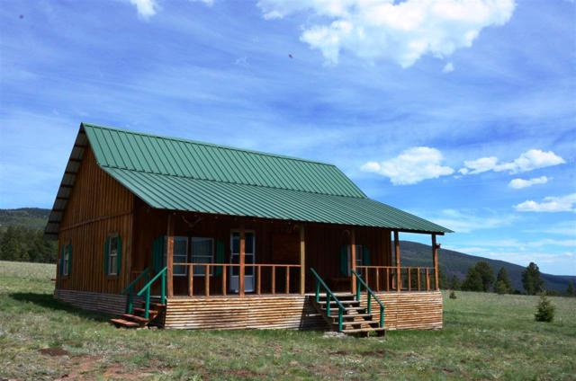 110 Resort Road 4, Angel Fire, NM 87710 (MLS #96934) :: Page Sullivan Group | Coldwell Banker Lota Realty