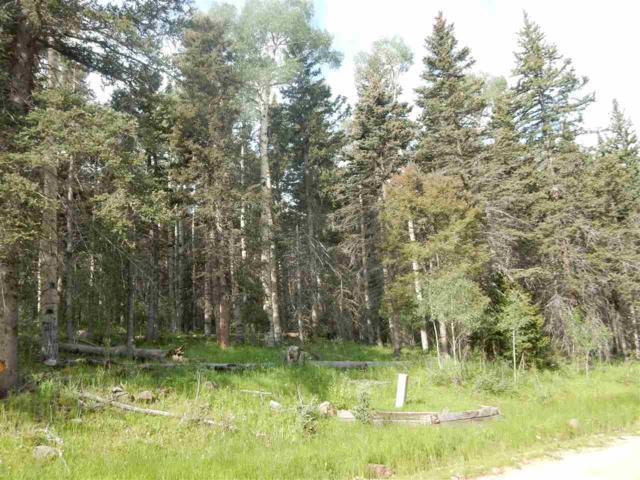 Lot 23 Elk Ridge I, Angel Fire, NM 87710 (MLS #97242) :: Page Sullivan Group | Coldwell Banker Mountain Properties