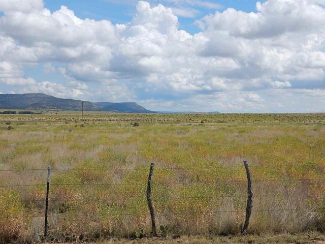 TBD Mountain Meadows, Cimarron, NM 87714 (MLS #97354) :: Page Sullivan Group   Coldwell Banker Lota Realty