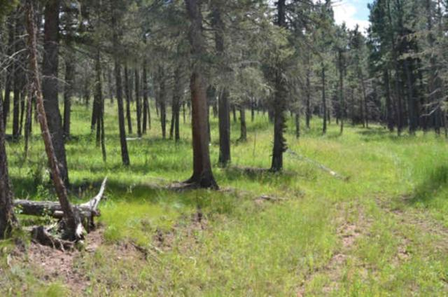 Lot 1529 Colfax Terrace, Angel Fire, NM 87710 (MLS #97376) :: Page Sullivan Group | Coldwell Banker Lota Realty