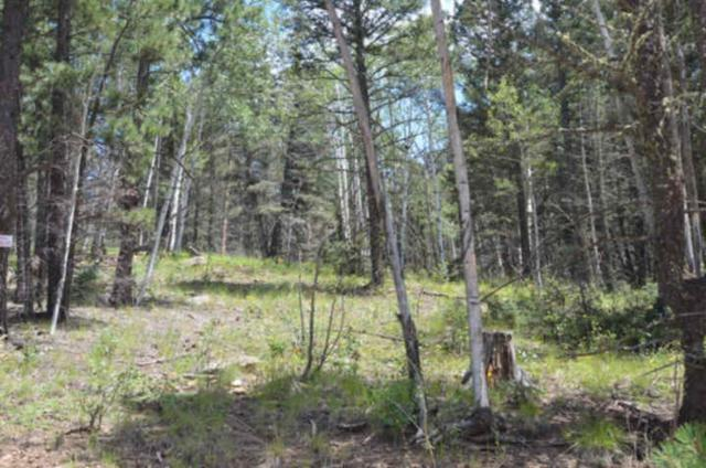 Lot 1530 Colfax Terrace, Angel Fire, NM 87710 (MLS #97377) :: Page Sullivan Group | Coldwell Banker Mountain Properties