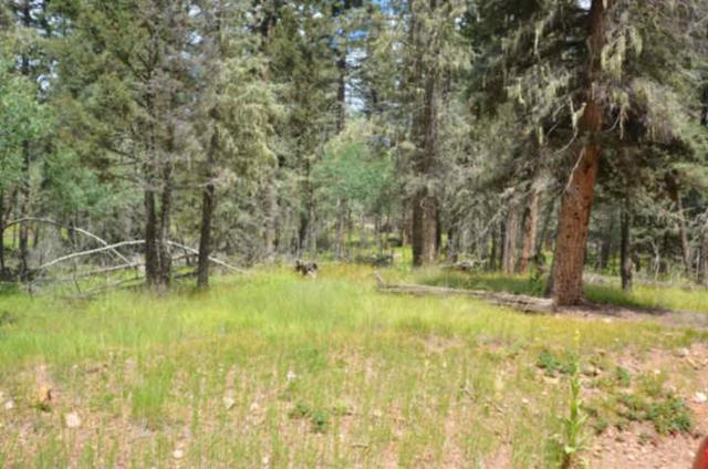Lot 9, Blk C Mountain Lake Terrace, Angel Fire, NM 87710 (MLS #97391) :: Angel Fire Real Estate & Land Co.