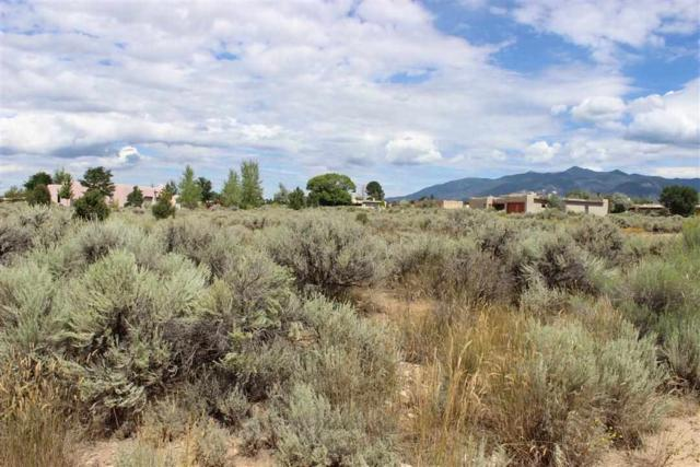Lot 21 Del Norte Subdivision, Taos, NM 87571 (MLS #97769) :: Page Sullivan Group | Coldwell Banker Lota Realty