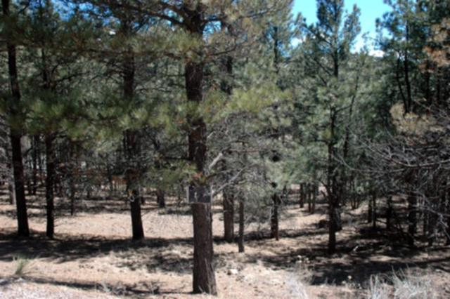 Lot 5 Blk C Alta Rd, Angel Fire, NM 87710 (MLS #98085) :: The Chisum Realty Group