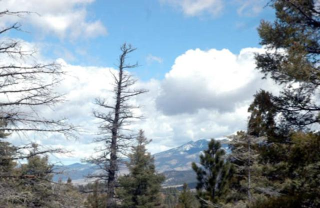 Lot 200 Summit Place, Angel Fire, NM 87710 (MLS #98333) :: Page Sullivan Group | Coldwell Banker Lota Realty