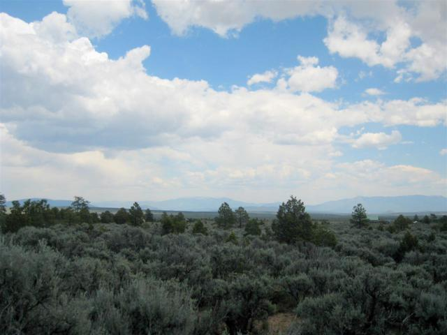 off Hwy 285 S Of Tp, Tres Piedras, NM 87577 (MLS #98468) :: Page Sullivan Group | Coldwell Banker Lota Realty