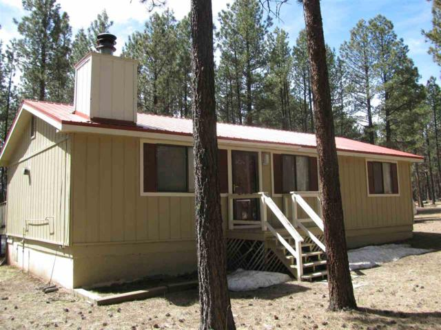 44 Knollwood, Angel Fire, NM 87710 (MLS #98560) :: Page Sullivan Group | Coldwell Banker Lota Realty