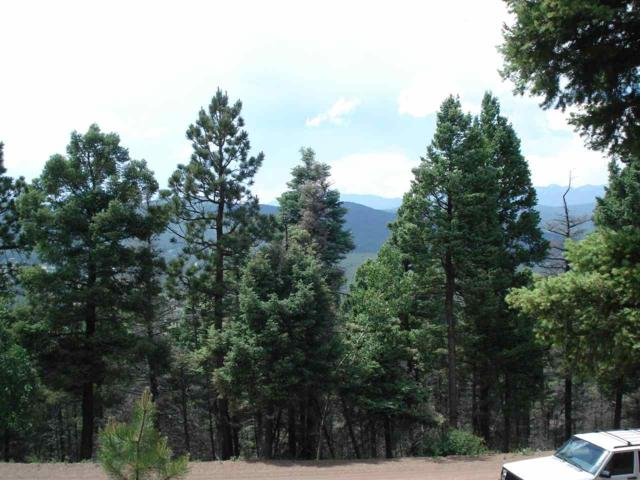 Lot 496 Vail Loop, Angel Fire, NM 87710 (MLS #98580) :: The Chisum Realty Group