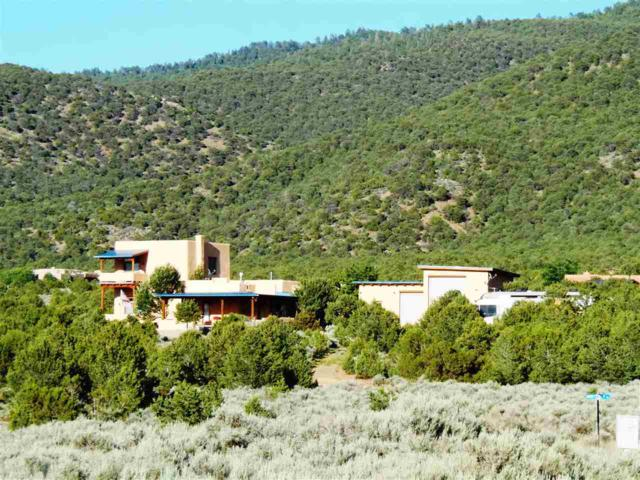 795 Espinoza Road, Taos, NM 87571 (MLS #98720) :: The Chisum Realty Group