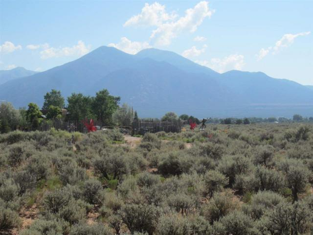 Lot 10 Eototo Road, Taos, NM 87571 (MLS #98742) :: Page Sullivan Group   Coldwell Banker Lota Realty